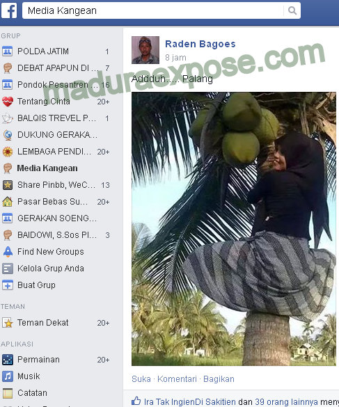 wanita_berjilbab_panjat_pohon_kelapa_facebook