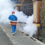 Dinkes Bangkalan Nyatakan KLB DBD