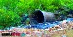 Antara Membuang Sampah dan Kesadaran