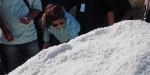 Bangkalan Gagal Sumbang  Garam Nasional Sesuai Target