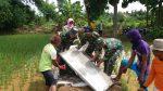Babinsa dan Poktan Desa Mandala Gapura Lakukan Pengecoran Jalan Persawahan