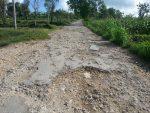 Jalan Penghubung Kecamatan Ganding-Pasongsongan Dibiarkan Rusak