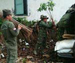 Pentingnya Penghijauan, Kodim Sumenep Tanam 4.260 Pohon Mahoni