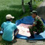 Ciptakan Keakraban, Babinsa Koramil 01/Kota Komsos Dengan Petani