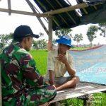 Babinsa Sapeken Bina Petani dengan Metoda Komunikasi Sosial