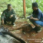 Komsos Serta Monitoring Tanaman Jagung Oleh Babinsa 0827/19 Sapeken