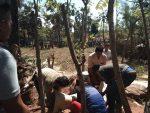 Polisi Tembak Mati DPO Pembunuhan Desa Montorna Sumenep