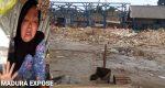 Renovasi Pasar Lenteng Diduga Terjadi Pelanggaran HAM